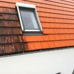 Gerade Hausbesitzer in Baum nähe, kennen dieses Problem nur zu gut: Moos, Blätter, Blütenstaub etc. sammelt sich mit den Jahren auf dem Dach ab. Selbst die vermeintlich saubere Luft, transportiert Schmutz der sich auch auf dem Dach absetzt. Eine Reinigung? für viele unmöglich. Nicht für uns!